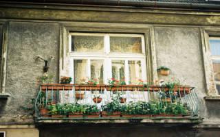 Чему снится стою на балконе. К чему снится балкон по соннику