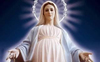 Дева мария мать иисуса христа. Дева мария