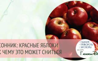 Кушать во сне яблоко красное. К чему снится яблоня с яблоками