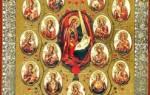 Икона божьей матери значение чем помогает. Типы икон богоматери