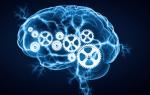 Что такое сознание человека определение. Что такое сознание — просто о сложном