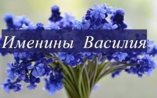 Поздравления с днем василия 14 января. Поздравления на Васильев день (именины Василия)