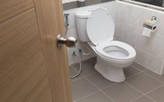 К чему снится мыть полы в туалете. К чему снится туалет по соннику