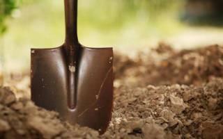 Человек копает землю лопатой. Что значит копать землю во сне