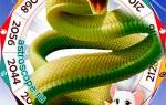 Подробный гороскоп для змеи на год.