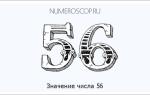 Что означает число 56. Если вас преследуют числа