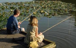 Поймать огромную рыбу во сне на удочку. Ловить рыбу во сне на удочку — к чему бы это? К чему снится ловить рыбу руками