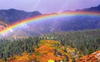 Увидеть радугу сне что означает. К чему увидеть сон про радугу? Что символизирует радуга
