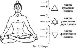 Биоэнергетика чакры и тонкие тела на практике. Энергетическая структура (тонкие тела и чакры) человека