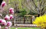 Зонирование огорода 6 соток по феншую. Фен-шуй участка частного дома: гармония человека и природы