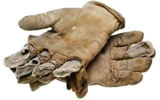 К чему во сне надевать перчатки. К чему снится Перчатки? Сонник — Белые цветы