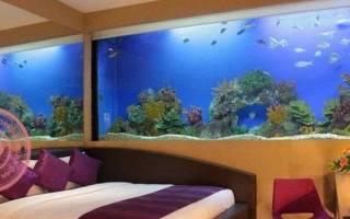 Сколько рыбок должно быть в аквариуме приметы. Аквариум в квартире: куда поставить и где разместить