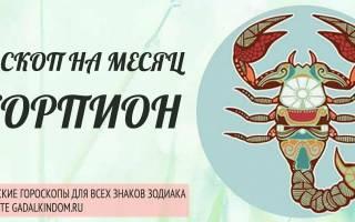 Денежный гороскоп на январь скорпион. Гороскоп для женщины – Скорпиона