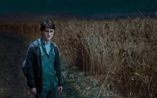 Миллисента Булстроуд из фильма «Гарри Поттер. Имя как фраза