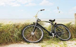 К чему снится ехать на велосипеде: толкование по различным сонникам. Ехать на велосипеде во сне: что это означает и к чему снится