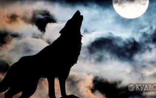 Полнолуние волка в году. Полнолуние Волка: Самое волшебное и мистическое время в году (фото)