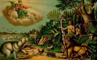 Могли ли адам и ева не согрешить. Адам и Ева — изгнание из Рая