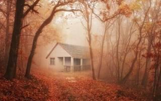 К чему снится дом: толкования различных сонников. Старый дом по соннику