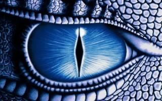 13 знак зодиака змееносец новый гороскоп характеристика. Зодиак змееносец тайный тринадцатый знак