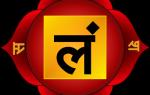 Муладхара чакра: за что отвечает и где находится. Значение чакры в энергии Кундалини