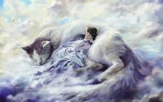 Что означает, если во сне приснился сон? Зачем человеку сон и почему возникают сновидения.