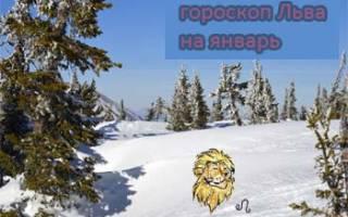 Гороскоп на конец января лев.