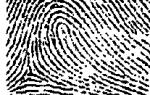 Причисление к лику святых. Причисление к лику святых называется канонизацией