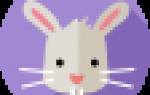 Годы кота зайца кролика 1903 так. Какой год рождения Кролика по восточному гороскопу