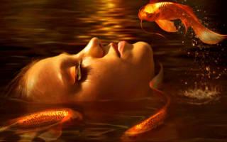 Приснились золотые рыбки: чего ждать от жизни? Большая золотая рыба.