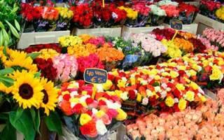 К чему снится покупка цветов живых. К чему снятся цветы
