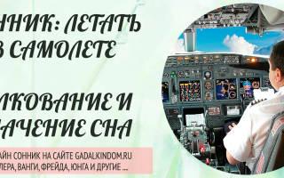 Что означает летать во сне на самолете. К чему снится полет на самолете? Толкования известных провидцев