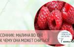 Что значит если снится малина. Крупная малина: к чему снится эта красная ягода? Приснились красивые малиновые кусты
