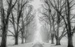 Снег во сне к чему снится весенние. Сонник: к чему снится во сне видеть снег, ходить босиком, бежать убирать, упасть, провалиться в снег? К чему снится падающий снег летом, весной, сугробы