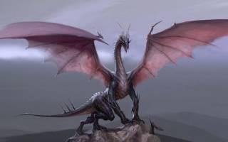 Рождённые в год белого дракона. Дракон: описание и характеристика