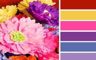 К чему снится цвет одежды. Значение цветов в снах