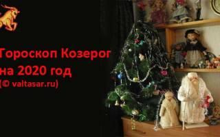 Любовный гороскоп козерог на год. Козерог — Тигр