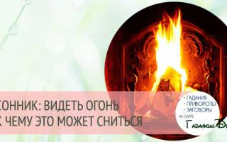 К чему снится огонь: толкование сна. Приснился огонь – что это может значить