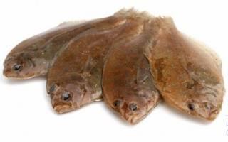 К чему снится камбала. Приснилась Рыба – что значит сон? Что значит камбала женщине по Римсокму соннику