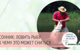 Во сне ловить рыбу. Ловить рыбу во сне на удочку — к чему бы это