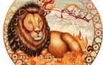 Как лечить медикаментозную аллергию. Гороскоп здоровья для Льва на октябрь