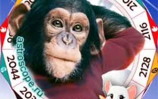 Новый год гороскоп для обезьяны. Обезьяна – Рыбы
