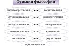 Гносеологической функции социальной философии. Особенности каждой функции философии