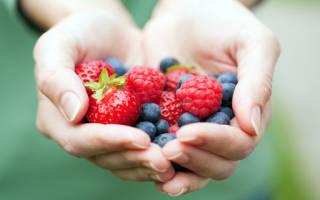 К чему снятся зеленые ягоды. К чему снятся ягоды