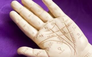 Как научиться хиромантии самостоятельно. Хирология и хиромантия для начинающих — узнайте, как расшифровывать знаки на руках