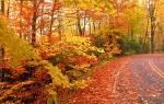 Приметы на 7 октября. октября: приметы и поверья