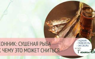 К чему снится сушеная рыба? К чему снится вяленая рыба: толкование значения сна по различным сонникам для мужчин и женщин.