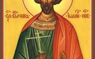 Вмч иоанн новый. Великомученик иоанн новый сочавский