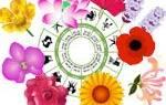 Цветочный гороскоп по знакам. Цветы по знакам зодиака