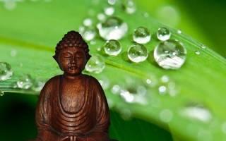 Первая благородная истина буддизма. Страдание