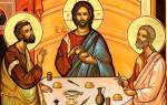 Святой апостол лука. Почему Святой Лука стал именно врачом? Евангелие, написанное Лукой
